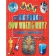 The Big Book How When And Why A Childrens ENcyclopedia